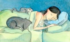 Get a Good Nights Sleep: Inflatable Pillows