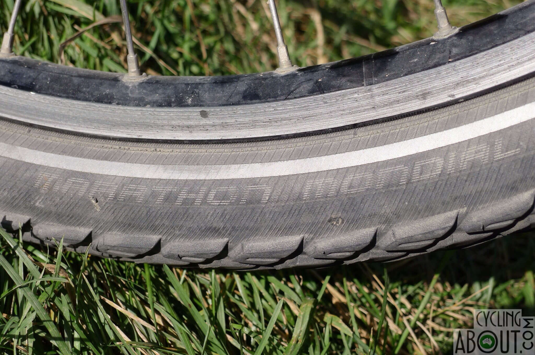 Schwalbe Marathon Mondial Tire 700x40 Wire Bead with Reflective Sidewall and