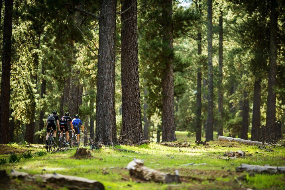 Cycling the Mawson Trail 09