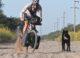 cyclingabout argentina
